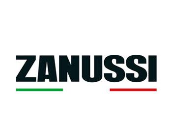 Ремонт бытовой техники Занусси в Саранске
