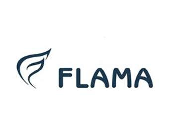 flama-repair-tehnika-saransk